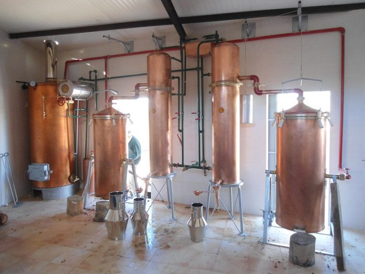 Licenciamento de Destilarias de Medronho